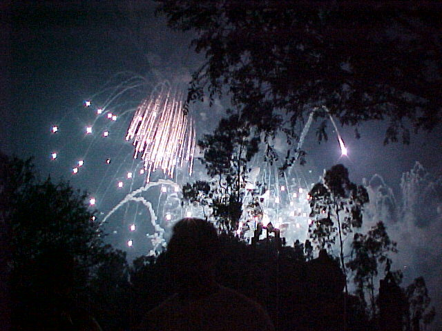 Disneyland fireworks.  Photo by JBl.